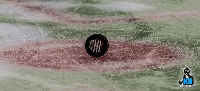 Champions Hockey League Puck